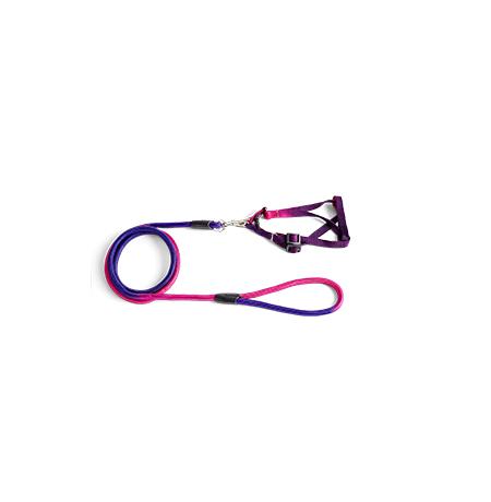 Imagem do produto Guia com Peitoral Colorida – M