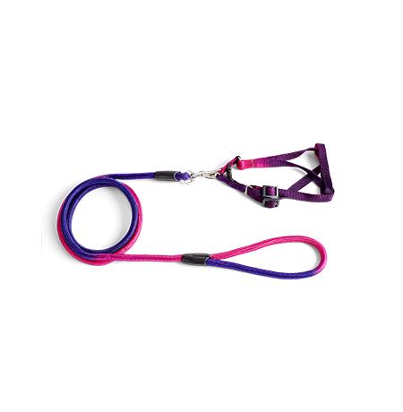 Imagem do produto Guia com Peitoral Colorida – G