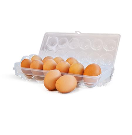 Imagem do produto Porta Ovos 12 un.