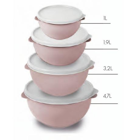 Imagem do produto: Kit 4 Potes Biovita 3475 - Rosa