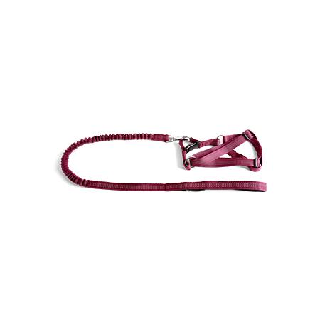 Imagem do produto: Guia com Peitoral Flexível – M 6111 - Bordo